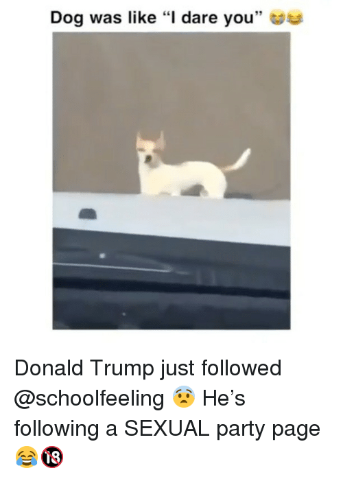 """a sexual: Dog was like """"l dare you"""" Donald Trump just followed @schoolfeeling 😨 He's following a SEXUAL party page 😂🔞"""