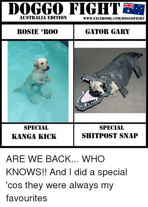 """Dank, Facebook, and Rosie: DOGGO FIGHT  AUSTRALIA EDITION  WWW. FACEBOOK COM/I0000GGOFIGHT  GATOR GARY  ROSIE """"R000  SPECIAL  SPECIAL  SHIT POST SNAP  KANGA KICK ARE WE BACK... WHO KNOWS!!  And I did a special 'cos they were always my favourites"""