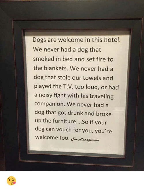 Dank, Dogs, and Drunk: Dogs are welcome in this hotel.  We never had a dog that  smoked in bed and set fire to  the blankets. We never had a  dog that stole our towels and  played the T.V. too loud, or had  a noisy fight with his traveling  companion. We never had a  dog that got drunk and broke  up the furniture....So if your  dog can vouch for you, you're  welcome too. he tanagement 😘
