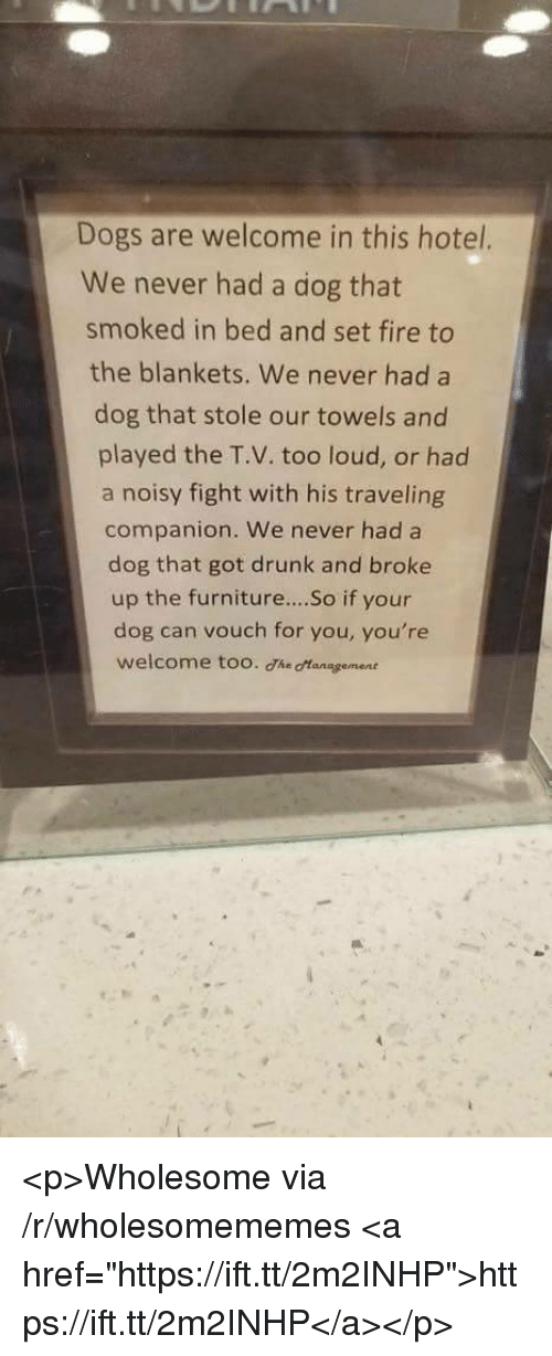 """noisy: Dogs are welcome in this hotel.  We never had a dog that  smoked in bed and set fire to  the blankets. We never had a  dog that stole our towels and  played the T.V. too loud, or had  a noisy fight with his traveling  companion. We never had a  dog that got drunk and broke  up the furniture....So if your  dog can vouch for you, you're  welcome too. The otanagement <p>Wholesome via /r/wholesomememes <a href=""""https://ift.tt/2m2INHP"""">https://ift.tt/2m2INHP</a></p>"""