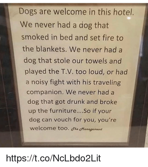 Dogs, Drunk, and Fire: Dogs are welcome in this hotel.  We never had a dog that  smoked in bed and set fire to  the blankets. We never had a  dog that stole our towels and  played the T.V. too loud, or had  a noisy fight with his traveling  companion. We never had a  dog that got drunk and broke  up the furnitur.... So if your  dog can vouch for you, you're  welcome too. The cManagement https://t.co/NcLbdo2Lit