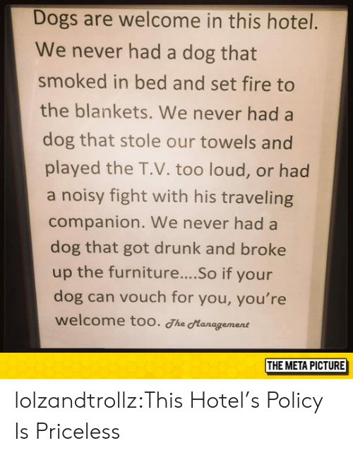 Got Drunk: Dogs are welcome in this hotel.  We never had a dog that  smoked in bed and set fire to  the blankets. We never had a  dog that stole our towels and  played the T.V. too loud, or had  a noisy fight with his traveling  companion. We never had a  dog that got drunk and broke  up the furniture....So if your  dog can vouch for you, you're  welcome too. The Hanagement  THE META PICTURE lolzandtrollz:This Hotel's Policy Is Priceless