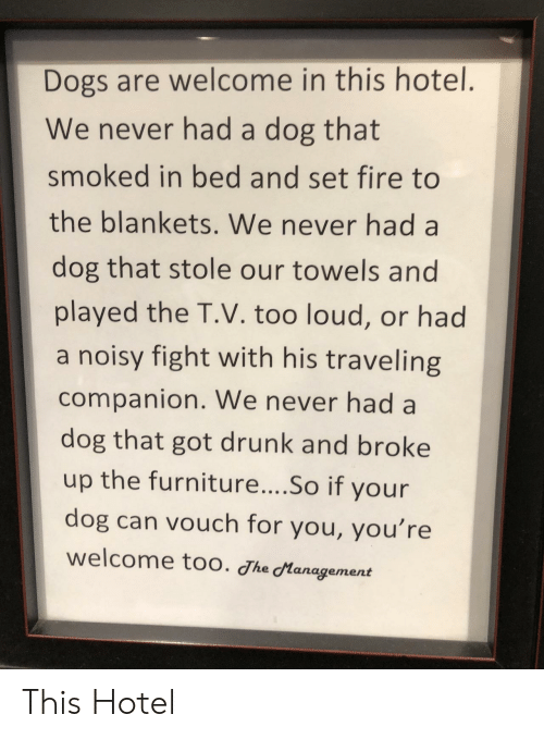 Dogs, Drunk, and Fire: Dogs are welcome in this hotel.  We never had a dog that  smoked in bed and set fire to  the blankets. We never had a  dog that stole our towels and  played the T.V. too loud, or had  a noisy fight with his traveling  companion. We never had a  dog that got drunk and broke  up the furniture....So if your  dog can vouch for you, you're  welcome too. Jhe Management This Hotel