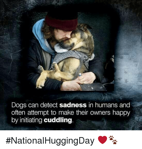 Initialism: Dogs can detect sadness in humans and  often attempt to make their owners happy  by initiating cuddling #NationalHuggingDay  ❤️🐾