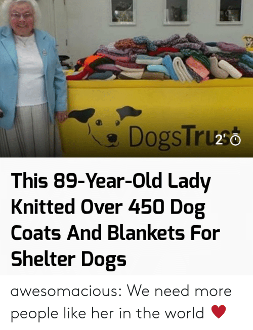 Dogs, Tumblr, and Blog: DogsTruso  This 89-Year-Old Lady  Knitted Over 450 Dog  Coats And Blankets For  Shelter Dogs awesomacious:  We need more people like her in the world ♥