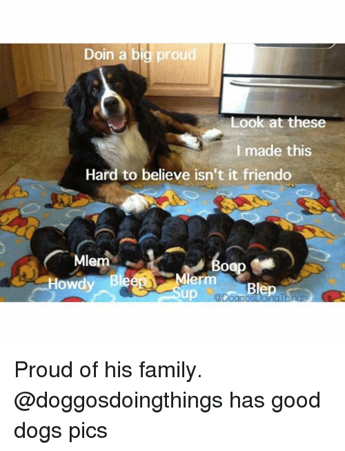 Mlem: Doin a big proud  Look at these  I made this  Hard to believe isn't it friendo  Mlem  Howdy Blee Mler  @Doad Proud of his family. @doggosdoingthings has good dogs pics