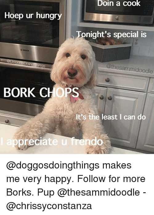 chops: Doin a cook  Hoep ur hungry  Tonight's special is  @thesammidoodle  BORK CHOPS  It's the least I can do  ep  preciate u frendo @doggosdoingthings makes me very happy. Follow for more Borks. Pup @thesammidoodle - @chrissyconstanza