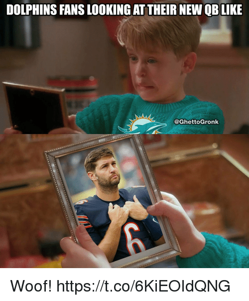 Football, Nfl, and Sports: DOLPHINS FANS LOOKING AT THEIR NEW QBLIKE  @GhettoGronk Woof! https://t.co/6KiEOIdQNG