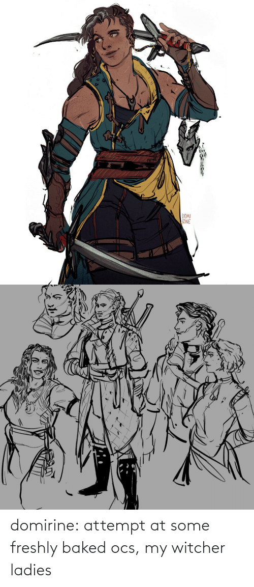 witcher: domirine:  attempt at some freshly baked ocs, my witcher ladies
