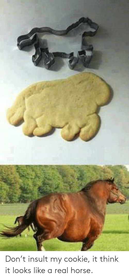 Like A: Don't insult my cookie, it think it looks like a real horse.