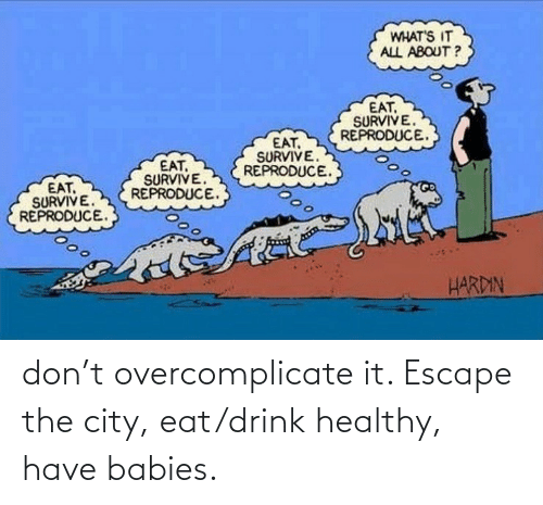 babies: don't overcomplicate it. Escape the city, eat/drink healthy, have babies.