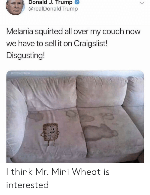 Trump Melania: Donald J. Trump  @realDonald Trump  Melania squirted all over my couch now  we have to sell it on Craigslist!  Disgusting!  comecomctogn I think Mr. Mini Wheat is interested