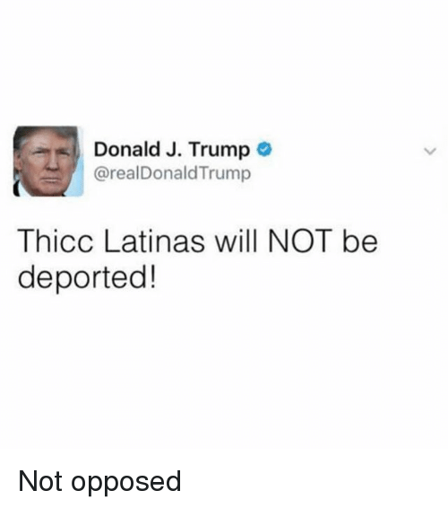 Trump, Dank Memes, and Will: Donald J. Trump  @realDonaldTrump  Thicc Latinas will NOT be  deported! Not opposed