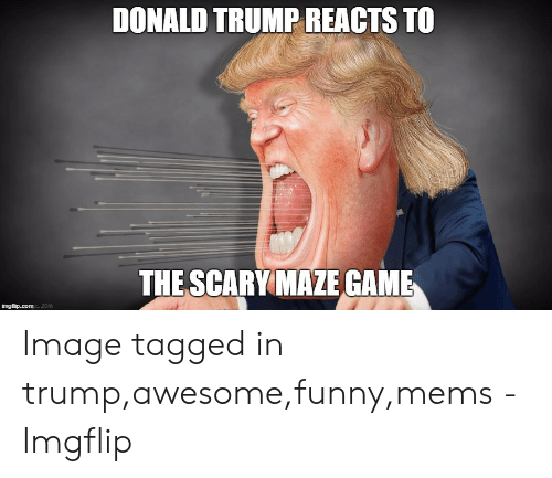 funny mems: DONALD TRUMP REACTS TO  THE SCARY MAZE GAME  2016 Image tagged in trump,awesome,funny,mems - Imgflip