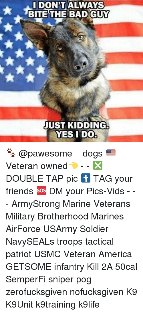 pogs: DON'T ALWAYS  I BITE THE BAD GUY  JUST KIDDING  YES I DO 🐾 @pawesome__dogs 🇺🇸 Veteran owned👈 - - ❎ DOUBLE TAP pic 🚹 TAG your friends 🆘 DM your Pics-Vids - - - ArmyStrong Marine Veterans Military Brotherhood Marines AirForce USArmy Soldier NavySEALs troops tactical patriot USMC Veteran America GETSOME infantry Kill 2A 50cal SemperFi sniper pog zerofucksgiven nofucksgiven K9 K9Unit k9training k9life