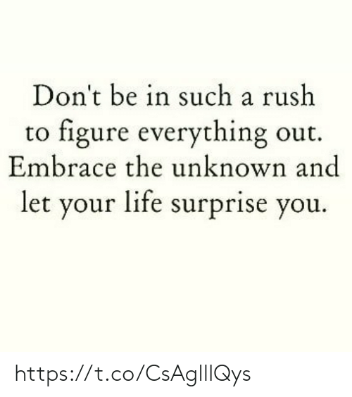 Life, Memes, and Rush: Don't be in such a rush  to figure everything out.  Embrace the unknown and  let your life surprise you. https://t.co/CsAglllQys