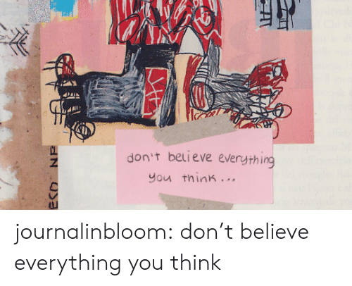 Tumblr, Blog, and Com: don't believe everything  you think. ..  ECO NE journalinbloom:  don't believe everything you think