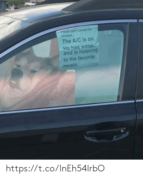 Favorite Music: dont break the  window  The A/C is on  He has water  and is listening  to his favorite  music. https://t.co/lnEh54lrbO