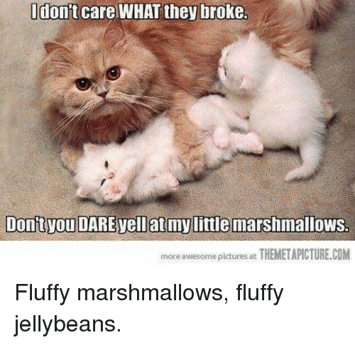 Fluffiness: don't care WHAT they broke  Dontvou DARE vell at mylittle marshmallows.  more awesome pictures at  THEMETAPICTURE.COM Fluffy marshmallows, fluffy jellybeans.