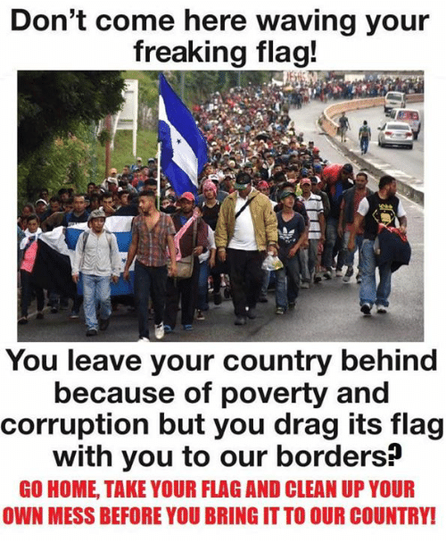 Memes, Home, and Corruption: Don't come here waving your  freaking flag!  You leave your country behind  because of poverty and  corruption but you drag its flag  with you to our borders?  GO HOME, TAKE YOUR FLAG AND CLEAN UP YOUR  OWN MESS BEFORE YOU BRING IT TO OUR COUNTRY!