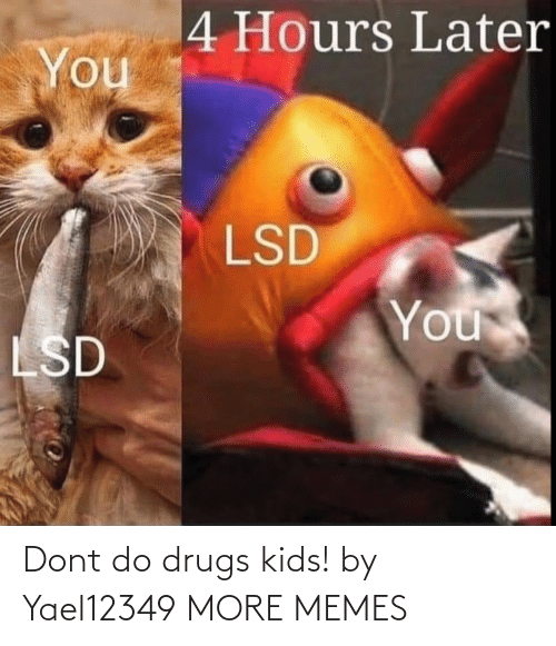Drugs: Dont do drugs kids! by Yael12349 MORE MEMES