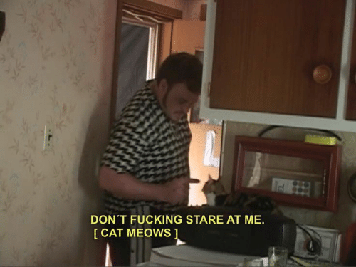 Meows: DON'T FUCKING STARE AT ME.  I CAT MEOWS