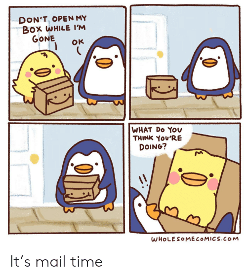Mail, Time, and Box: DON'T, OPEN MY  Box WHILE I'M  GONE  OK  WHAT Do YOv  THINK You'RE  DOING?  WHOLESOMECOMICS.cOoM It's mail time