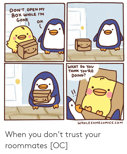 Box, Gone, and Open: DON'T, OPEN MY  Box WHILE I'M  GONE  OK  WHAT Do YOv  THINK You'RE  DOING?  WHOLESOMECOMICS.cOoM When you don't trust your roommates [OC]