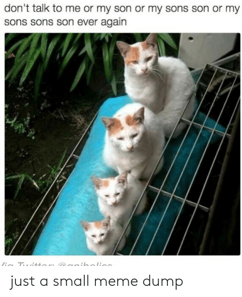 Meme, Me or My Son, and Don't Talk to Me: don't talk to me or my son or my sons son or my  sons sons son ever again  ia Tui+tor: cuniholi just a small meme dump