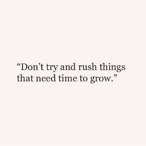 "Dont Try: ""Don't try and rush things  that need time to grow.""  95"