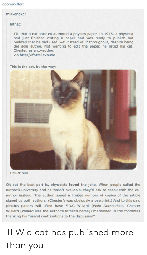 """Tfw, Best, and Http: doomsniffer:  mikkeneko:  tilthat:  TIL that a cat once co-authored a physics paper. In 1975, a physicist  had just finished writing a paper and was ready to publish but  realized that he had used 'we' instead of 'I' throughout, despite being  the sole author. Not wanting to edit the paper, he listed his cat,  Chester, as a co-author.  via http://ift.tt/2pvbu4c  This is the cat, by the way:  I trust him  Ok but the best part is, physicists loved the joke. When people called the  author's university and he wasn't available, they'd ask to speak with the co-  author instead. The author issued a limited number of copies of the article  signed by both authors. (Chester's was obviously a pawprint.) And to this day,  physics papers will often have F.D.C Willard (Felix Domesticus, Chester  Williard [Willard was the author's father's name]) mentioned in the footnotes  thanking his """"useful contributions to the discussion"""". TFW a cat has published more than you"""