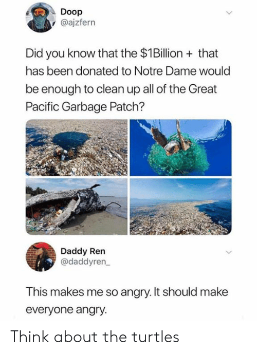 So Angry: Doop  @ajzfern  Did you know that the $1Billion that  has been donated to Notre Dame would  be enough to clean up all of the Great  Pacific Garbage Patch?  Daddy Ren  @daddyren  This makes me so angry. It should make  everyone angry. Think about the turtles