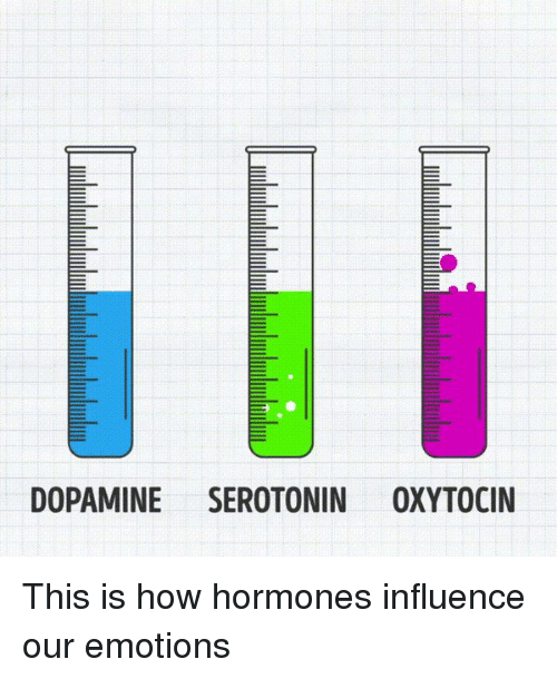 Memes, 🤖, and Dopamine: DOPAMINE SEROTONIN OXYTOCIN This is how hormones influence our emotions