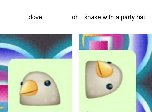 Dove, Party, and Snake: dove  snake with a party hat  or
