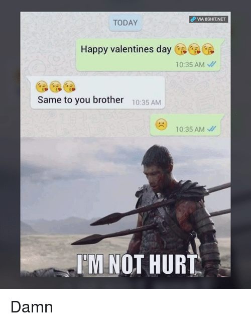 Memes, 🤖, and  Same to You: dP VIA 8SHIT NET  TODAY  Happy valentines day  10:35 AM  Same to you brother  10:35 AM  10:35 AM  M NOT HURT Damn