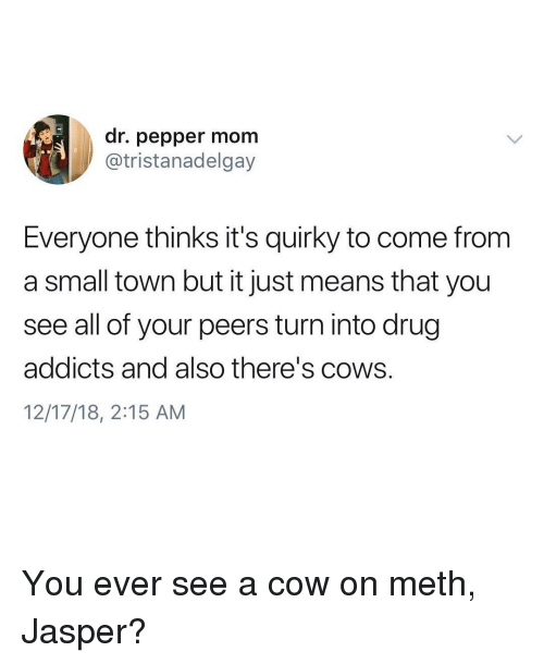 Ironic, Drug, and Mom: dr. pepper mom  @tristanadelgay  Everyone thinks it's quirky to come from  a small town but it just means that you  see all of your peers turn into drug  addicts and also there's cows.  12/17/18, 2:15 AM You ever see a cow on meth, Jasper?
