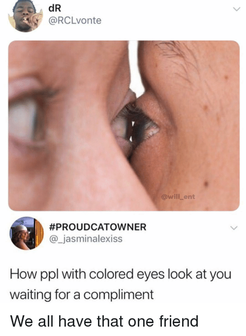 We All Have That One Friend: dR  @RCLvonte  @will_ent  #PROUDCATOWNER  @_jasminalexiss  How ppl with colored eyes look at you  waiting for a compliment We all have that one friend