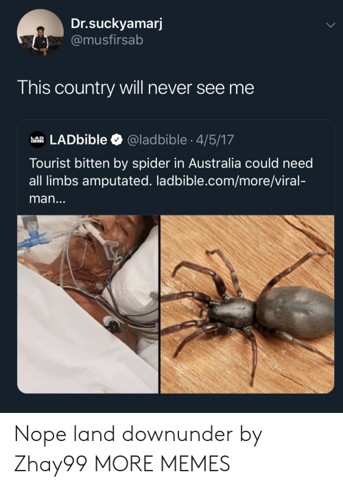 Dank, Memes, and Spider: Dr.suckyamarj  @musfirsab  This country will never see me  LADbible  @ladbible 4/5/17  LAD  BIBLE  Tourist bitten by spider in Australia could need  all limbs amputated. ladbible.com/more/viral-  man... Nope land downunder by Zhay99 MORE MEMES