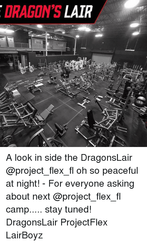 Flexes: DRAGON'S LAIR A look in side the DragonsLair @project_flex_fl oh so peaceful at night! - For everyone asking about next @project_flex_fl camp..... stay tuned! DragonsLair ProjectFlex LairBoyz