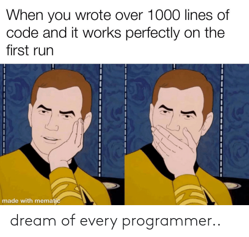 programmer: dream of every programmer..