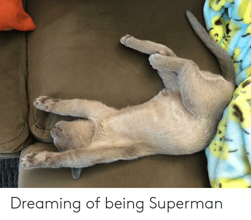 Superman, Dreaming, and Being: Dreaming of being Superman
