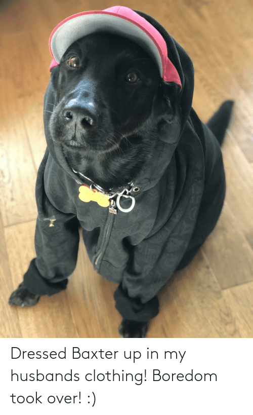 Aww Memes: Dressed Baxter up in my husbands clothing! Boredom took over! :)