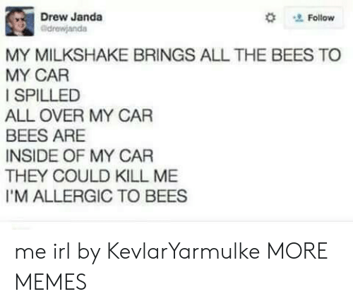 Dank, Memes, and Target: Drew Janda  #  Follow  drewjanda  MY MILKSHAKE BRINGS ALL THE BEES TO  MY CAR  I SPILLED  ALL OVER MY CAR  BEES ARE  INSIDE OF MY CAR  THEY COULD KILL ME  I'M ALLERGIC TO BEES me irl by KevlarYarmulke MORE MEMES