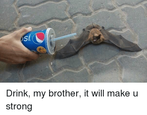 Strong, Brother, and Will: Drink, my brother, it will make u strong
