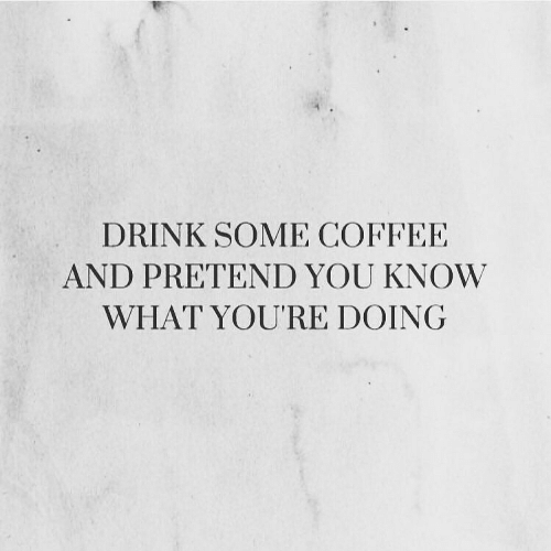 Coffee, You, and What: DRINK SOME COFFEE  AND PRETEND YOU KNOW  WHAT YOURE DOING