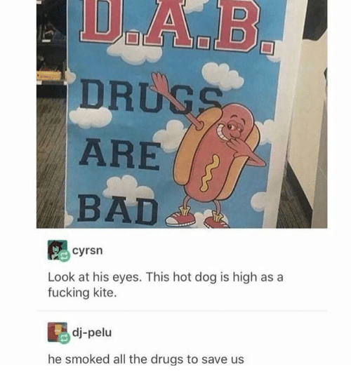 Bad, Dank, and Drugs: DRUG  ARE  BAD  cyrsn  Look at his eyes. This hot dog is high as a  fucking kite.  dj-pelu  he smoked all the drugs to save us