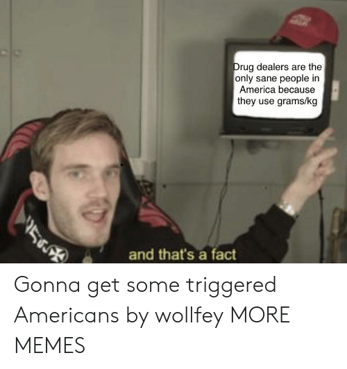 America, Dank, and Memes: Drug dealers are the  only sane people in  America because  they use grams/kg  V5  and that's a fact Gonna get some triggered Americans by wollfey MORE MEMES