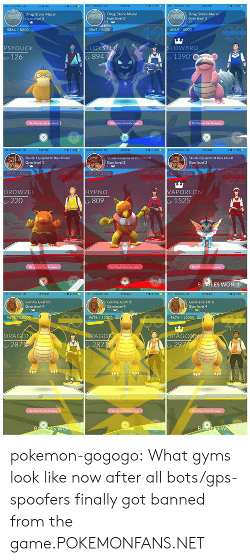 Psyduck: Drug Store Mural  Gym level 3  Drug Store Mural  Gym level 3  Drug Store Mural  Gym level 3  5864/8000  5864 8000  5864 8000  SLOWBRO  cp 1390  PSYDUCK  CLOY  p 126  cP 894  is too far  This  Skunk Equipment Box Mural  Gym level 3  Skunk Equipment Box Mural  Gym level 3  Skunk Equipment Box Mural  Gym level 3  8000  511 8000  VAPOREON  CP 1525  DROWZEE  HYPNO  p 220  cP 809  BA YLES WON: 1  LTE  12:13 PM  12:13 PM  LTE  Gorilla Graffiti  Gym level 4  Gorilla Graffiti  Gym level 4  Gorilla Graffiti  Gym level 4  96764 1  9676/12  9676/1  DRAGO  287  DRAG  DRAGO  Cp 287 pokemon-gogogo:  What gyms look like now after all bots/gps-spoofers finally got banned from the game.POKEMONFANS.NET