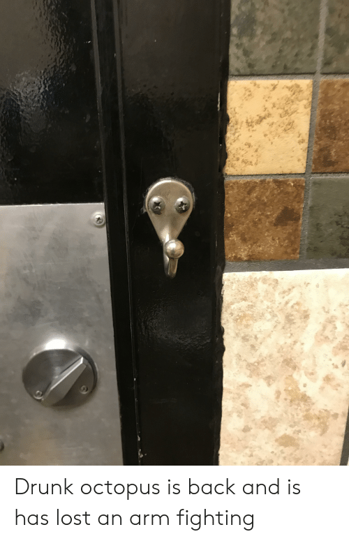 Drunk, Funny, and Lost: Drunk octopus is back and is has lost an arm fighting