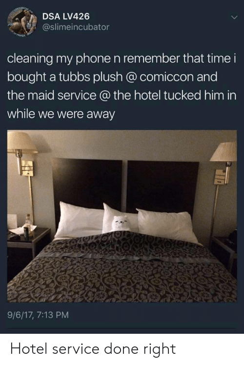 Phone, Hotel, and Time: DSA LV426  @slimeincubator  cleaning my phone n remember that time i  bought a tubbs plush @ comiccon and  the maid service @ the hotel tucked him in  while we were away  9/6/17, 7:13 PM Hotel service done right